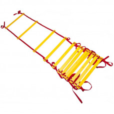 Лестница координационная (12 ступеней, 51*540см)